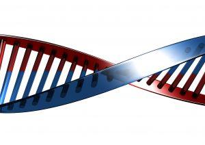 Sales DNA, over de kenmerken van verkopers